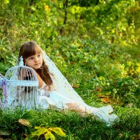 в лесу :: Татьяна Бикетова
