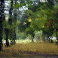 Осенняя акварель :: shvlad