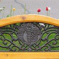 Эмблема Тбилиси :: Наталья Джикидзе (Берёзина)