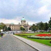 Народная Скупщина (Парламент) Республики Сербия в Белграде :: Денис Кораблёв