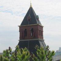 Тайницкая башня Кремля :: Маера Урусова