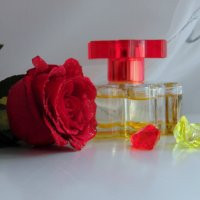 Любимый аромат. :: nadyasilyuk Вознюк