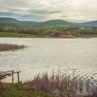 Утро на озере :: Евгений Зинченко