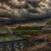 Бой с тигром :: Иван Анисимов