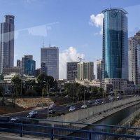 Израиль из окна автобуса.. :: Владимир Сквирский