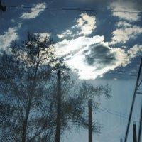 Отражение в окне :: Света Кондрашова