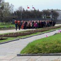 Чтим память погибших :: Вера Щукина