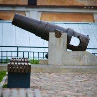 даугавпилсская крепость :: Андрей Герасимов