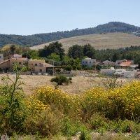 Вид с горы Меддиго :: Aharon Gershon
