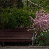 Скамейка у ворот :: Сергей Касимов