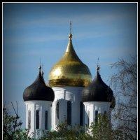 Купола Троицкого собора. г.Псков. :: Fededuard Винтанюк