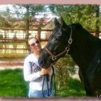 Кони, кони — вы сказка и песня. К вам любви объяснить не смогу. :: Людмила Богданова (Скачко)