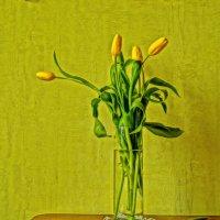 Жёлтые тюльпаны :: Ирина ***