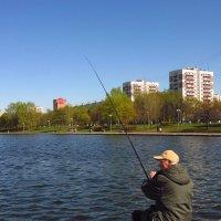 IMG_8199 - Ловись, рыбка! :: Андрей Лукьянов