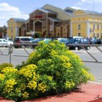 Городской пейзаж :: Ирина Прыбыткова