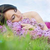 Сиреневые сны :: Алёна Жила