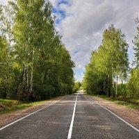 Весенняя  дорога. :: Валера39 Василевский.
