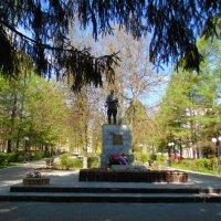 Монумент воинам, погибшим при освобождении южной окраины г. Тулы 1941г. :: Людмила Ларина