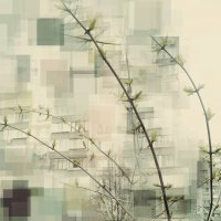Весна :: Kira Kredova