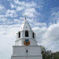 Спасская башня Cызранского КРЕМЛЯ :: nika555nika Ирина