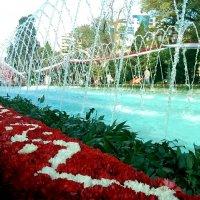 композиция:цветы и фонтан :: Шамиль Аликулиев