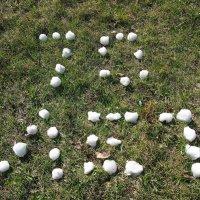 8мая растаял снег - надпись осталась :: Николай Сапегин
