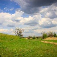Весенние просторы :: Nataliya Oleinik