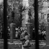 Смотрящие. :: Андрей Лобанов