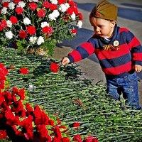 последний цветок на 9 мая :: Natalia Mihailova