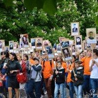 Бессмертный полк в г. Майкопе :: Зизи Тимошенко