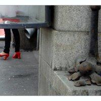 черевички с Петроградской стороны...) :: sv.kaschuk