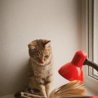Тишина! Читаю я... :: Павел Сухоребриков