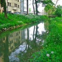 Был месяц май, весна была... :: Galina Dzubina