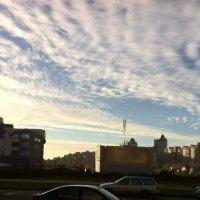 Утро в Уручье. Небо и земля :: Дмитрий Загорский