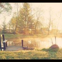 Утро на маленьком прудике... :: Елена Kазак