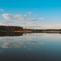 Зеркало природы :: Olga Photo