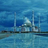 Красота интернациональна... :: Александр Бойко