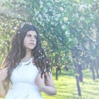 Цветущие деревья :: Яна Харченко