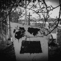 09.05.2015 :: Ant Glazychev