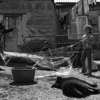 Рыбацкая семья :: Vazgen Martirosyan