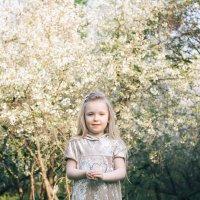 Весна. :: Екатерина Сейба