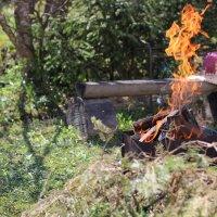 Огонь :: Виталий Терентьев