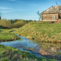 Заброшенный дом :: Сергей Винтовкин