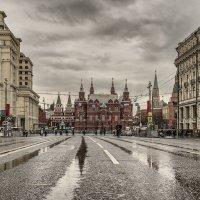 На главной улице господствует «зелёная волна» :: Ирина Данилова