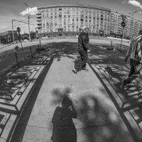 Шла себе по улице тень :: Ирина Данилова