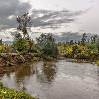 Река Топорок :: Николай Андреев