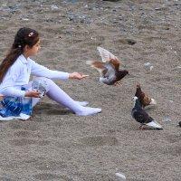 Девочка кормит голубей :: Николай Николенко