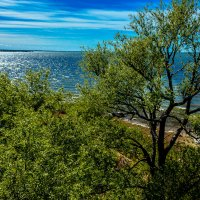 Вид на залив с маяка :: Игорь Вишняков