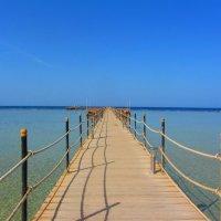 дорога в море :: Евгения Ашихмина