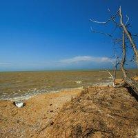 Безжизненный берег :: Никита Юдин